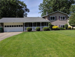Photo of 8267 Findley Dr, Mentor, OH 44060 (MLS # 4106357)