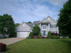 Photo of 9995 Parkland Dr, Twinsburg, OH 44087 (MLS # 4106533)