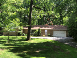 Photo of 10196 Page Dr, Mentor, OH 44060 (MLS # 4106793)