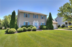 Photo of 2312 Demi Dr, Twinsburg, OH 44087 (MLS # 4108412)