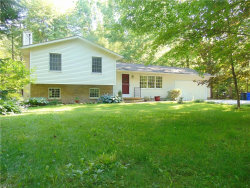 Photo of 6038 State Route 82, Hiram, OH 44234 (MLS # 4117465)