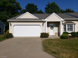 Photo of 1395 East Cross Creek Dr, Unit 32, Willoughby, OH 44094 (MLS # 4117618)
