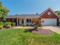 Photo of 9510 Lismore Ln, Mentor, OH 44060 (MLS # 4117944)
