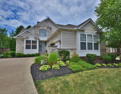 Photo of 11488 Turnstone Ln, Concord, OH 44077 (MLS # 4118525)