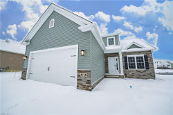 Photo of 8728 Summer Wind Ln, Mentor, OH 44060 (MLS # 4122076)