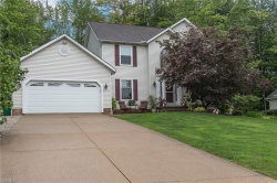 Photo of 9890 Weathersfield Dr, Mentor, OH 44060 (MLS # 4122766)