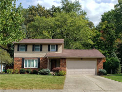 Photo of 7623 White Pine Ct, Mentor, OH 44060 (MLS # 4124188)