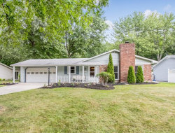 Photo of 8363 Fairfax Dr, Mentor, OH 44060 (MLS # 4124621)