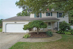 Photo of 7300 Chillicothe Rd, Mentor, OH 44060 (MLS # 4128249)