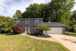 Photo of 9591 Yellowwood Dr, Mentor, OH 44060 (MLS # 4130965)