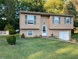 Photo of 9146 Hickory Cir, Windham, OH 44288 (MLS # 4132556)