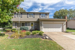 Photo of 6283 Foxwood Ct, Mentor, OH 44060 (MLS # 4133656)