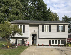 Photo of 9140 Hickory Circle, Windham, OH 44288 (MLS # 4134514)