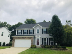 Photo of 699 Arbor Trails Dr, Macedonia, OH 44056 (MLS # 4137531)