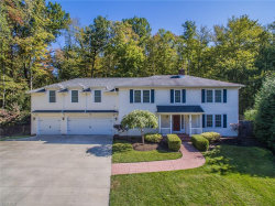 Photo of 60 Hastings Ln, Chagrin Falls, OH 44022 (MLS # 4140179)