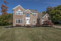 Photo of 10258 Andover Dr, Twinsburg, OH 44087 (MLS # 4140878)