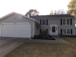 Photo of 10450 Belleau Dr, Twinsburg, OH 44087 (MLS # 4143802)