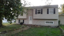 Photo of 9025 Spring Dr, Windham, OH 44288 (MLS # 4143941)