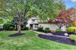 Photo of 7331 Mountain Quail Pl, Concord, OH 44077 (MLS # 4145350)