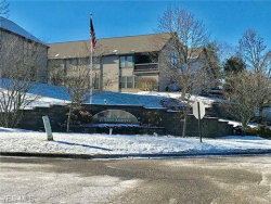 Photo of 4054 Saint Andrews Ct, Unit 3, Canfield, OH 44406 (MLS # 4157810)