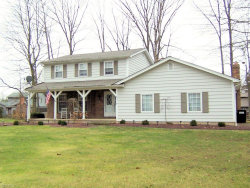 Photo of 8314 Weathered Wood Trl, Poland, OH 44514 (MLS # 4160245)
