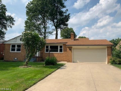 Photo of 388 Argyle Ave, Youngstown, OH 44512 (MLS # 4161787)
