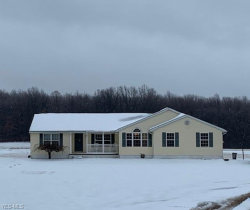 Photo of 3622 Stroup Rd, Rootstown, OH 44272 (MLS # 4161824)