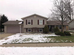 Photo of 5636 London Dr, Youngstown, OH 44515 (MLS # 4162760)