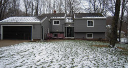 Photo of 5905 Stephanie Ln, Solon, OH 44139 (MLS # 4163347)