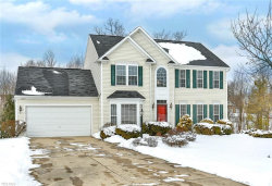 Photo of 2795 Sedge Grass Trl, Stow, OH 44224 (MLS # 4163400)