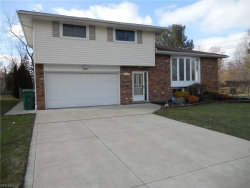 Photo of 6160 Melshore Dr, Mentor, OH 44060 (MLS # 4169686)