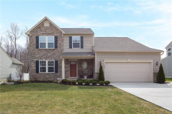 Photo of 11300 Alexa Dr, Concord, OH 44077 (MLS # 4174002)