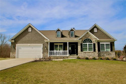 Photo of 8080 Rainbow Dr, Concord, OH 44077 (MLS # 4176015)