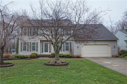 Photo of 6901 Cherry Blossom Dr, Mentor, OH 44060 (MLS # 4176824)