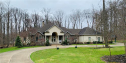 Photo of 10705 Mount Royal Dr, Concord, OH 44077 (MLS # 4177498)