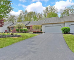 Photo of 146 Turquoise Dr, Cortland, OH 44410 (MLS # 4188076)