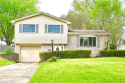 Photo of 4260 Wedgewood Dr, Youngstown, OH 44511 (MLS # 4189688)