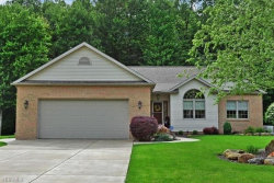 Photo of 2574 Forest Springs Dr Southeast, Warren, OH 44484 (MLS # 4190969)