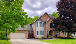 Photo of 401 Shadydale Dr, Canfield, OH 44406 (MLS # 4192974)
