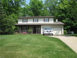 Photo of 1139 Riverview Dr, Macedonia, OH 44056 (MLS # 4193409)
