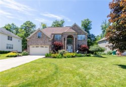 Photo of 9768 Firelands Dr, Twinsburg, OH 44087 (MLS # 4198363)