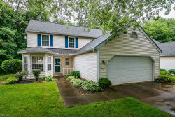 Photo of 5796 Ridgeview Ln, Unit A, Willoughby, OH 44094 (MLS # 4199346)