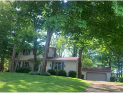 Photo of 57 Water St, Poland, OH 44514 (MLS # 4199669)