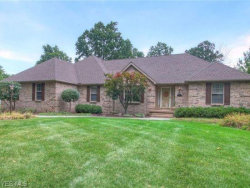 Photo of 601 Stoneybrook Ln, Canfield, OH 44406 (MLS # 4200013)