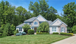 Photo of 335 West Homestead Dr, Aurora, OH 44202 (MLS # 4200749)