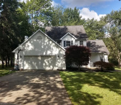 Photo of 7504 Demshar Dr, Mentor, OH 44060 (MLS # 4201410)