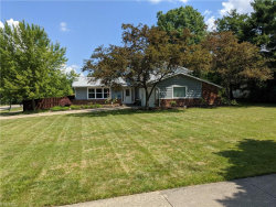 Photo of 32875 Arlesford Dr, Solon, OH 44139 (MLS # 4201546)