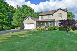 Photo of 9875 Detwiler Rd, Canfield, OH 44406 (MLS # 4201579)