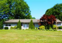 Photo of 7658 Chillicothe Rd, Mentor, OH 44060 (MLS # 4201667)