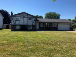 Photo of 5674 Marble Ln, Willoughby, OH 44094 (MLS # 4201922)